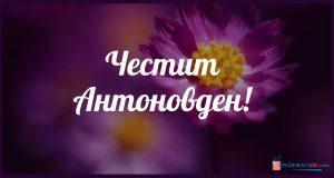 Честит Антоновден - картички с пожелания