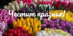 Честит празник с картичка с цветя